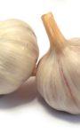 Buying and Storing Garlic